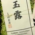 マツコ絶賛の日本茶4選!小林裕茶師が選ぶお茶の値段や通販!知らない世界
