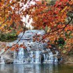養老渓谷の紅葉の見頃は?粟又の滝まで電車とバスの時間も【千葉県】