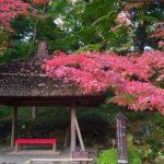 小石川後楽園の紅葉2018見頃やアクセスは?ランチおすすめも!