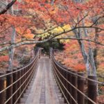 花貫渓谷の紅葉は吊橋が絶景!美肌日帰り温泉や茅葺古民家で食事も。