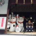 今戸神社御朱印の書き置き時期に注意|時間や料金と評判口コミ