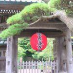 鎌倉長谷寺で御朱印をもらう注意点|受付時間と場所や限定の種類