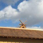 大嘗宮一般公開の見どころと「黒木造り」鳥居の謎!飛鳥時代の建築法がすごい!